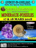 GOHELLIUM2018, 17ème Bourse Minéraux-Fossiles