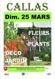 Marche aux fleurs plants deco jardin