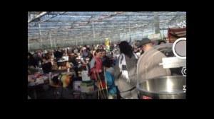 Rendez vous mensuel des chineurs jardinerie Marionneau 0241786083