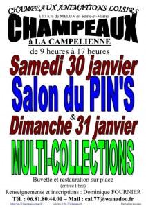 Salon MultiCollections 31/01/2021 à CHAMPEAUX (77)