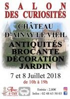 11ème Salon des Curiosités au Château d'Ainay le Vieil