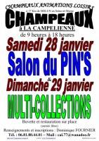 Salon du Pin's le 28/01/2017 à CHAMPEAUX (77)
