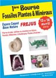 1ère Bourse Fossiles,Minéraux & Lithothérapie de FREJUS