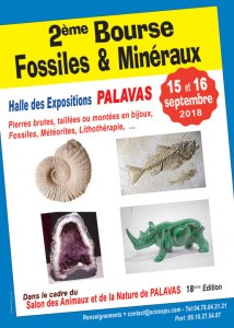 2 ème Bourse Fossiles et Minéraux de Palavas