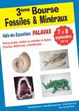 3 ème Bourse aux Minéraux, Fossiles et Lithothérapie de PALAVAS les Flots
