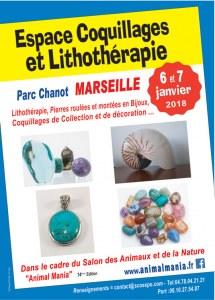 1er Espace Coquillages et Lithothérapie - Parc Chanot Marseille