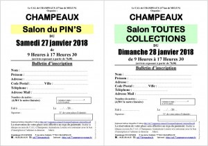 Salon MultiCollections 28/01/2018 à CHAMPEAUX (77)