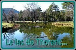 Foire a tout -Braderie - Vide grenier au Lac de Thorenc 06750