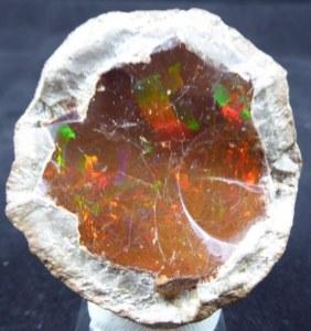 3 éme salon-vente minéraux fossiles micro-minéraux coquillages sables (17390) La Tremblade