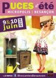 Puces d'été à Micropolis